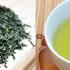 煎茶と抹茶の歴史と今を時代と共に語る